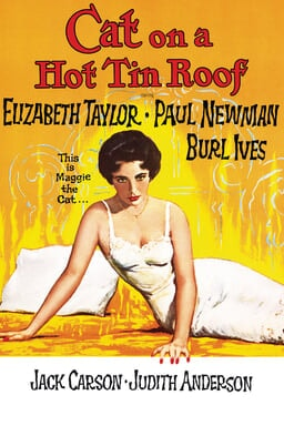 Cat on a Hot Tin Roof keyart