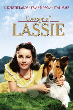 Courage of Lassie keyart