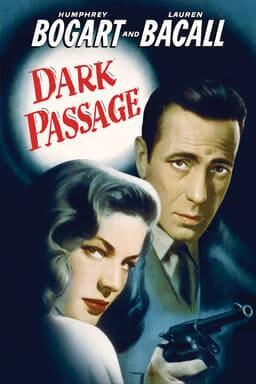 Dark Passage keyart
