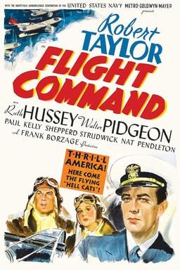 Flight Command keyart