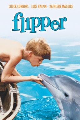 Flipper keyart
