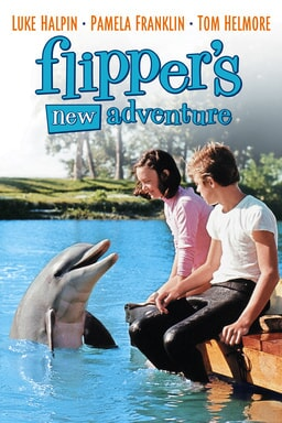 Flippers New Adventure keyart