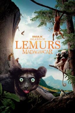 Island of Lemurs: Madagascar keyart