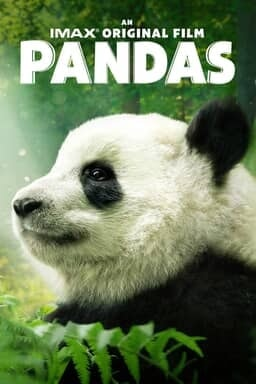 Pandas 2018 - Keyart