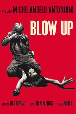 Blow Up - A Film by Michelangelo Antonioni - man taking photos of girl underneath him