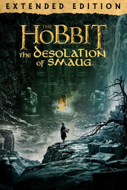 The Hobbit: The Desolation of Smaug (Extended Edition) - Bilbo standing on rocks in a mountain