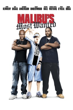 Malibu's Most Wanted - Key Art