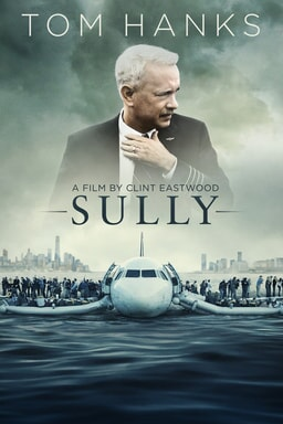 sully home video poster