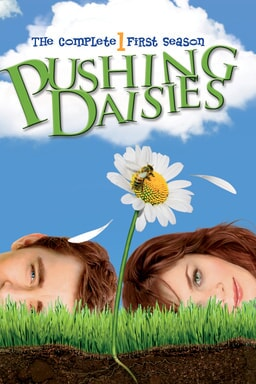 Pushing Daisies: Season 1 keyart