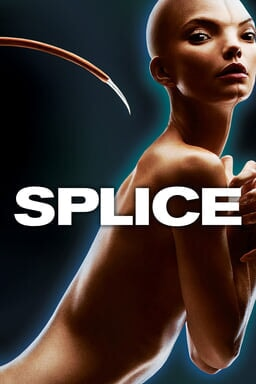 Splice keyart