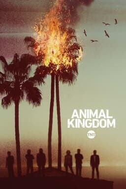 Animal Kingdom S1 - Key Art