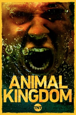 Animal Kingdom S3 - Key Art