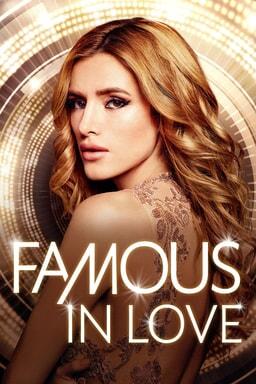 famous in love season 1 poster