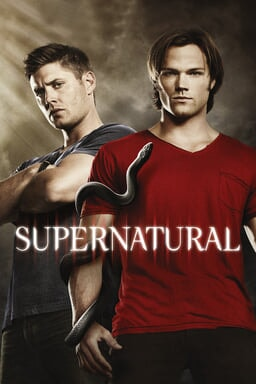 Supernatural: Season 6 - Key Art