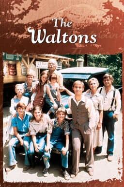 Waltons: Season 1 keyart