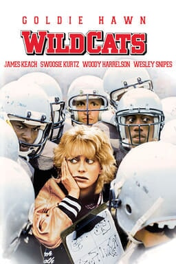 Wildcats keyart