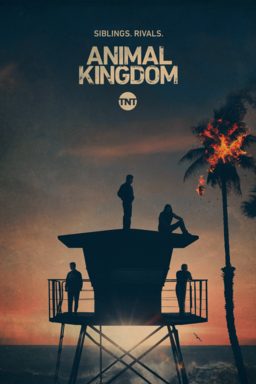 Animal Kingdom: Season 5 - different cast members sitting on lifeguard house with the ocean sunset