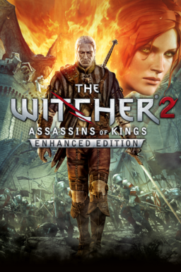 Witcher 2: Assassins of Kings keyart